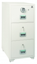 Fire Proof Cabinet 300