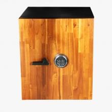 گاوصندوق دکوراتیو GSW600